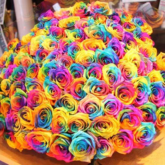 Роз букет из разноцветных роз